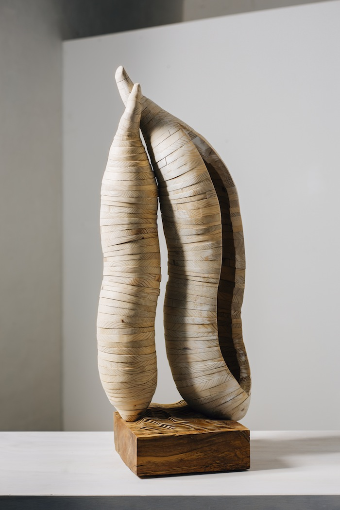 Seed Pods sculpture Sholto Turner